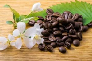 Café en granocon flores y una hoja verde