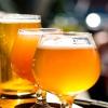 Clases de cerveza para disfrutar de ellas en los meses de Verano
