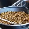 El gusano de la harina aprobado para el consumo humano en la UE
