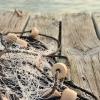 La FAO emite la primera declaración a favor de la pesca y acuicultura sostenibles