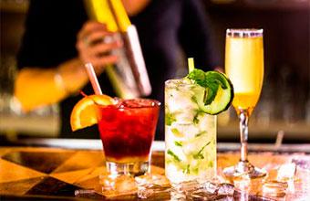 bebidas para hosteleria