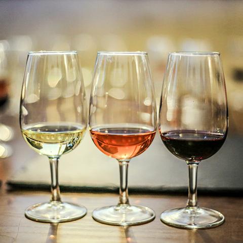 cata de vinos en hostelería