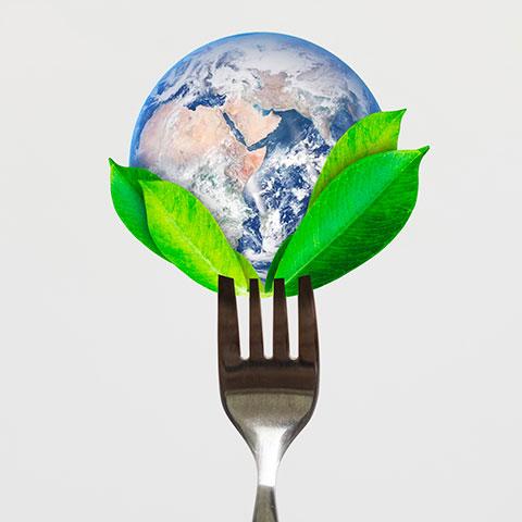 Gastronomia sostenible en la hosteleria